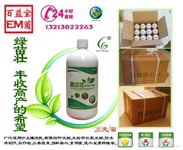 绿苗壮种植菌 1