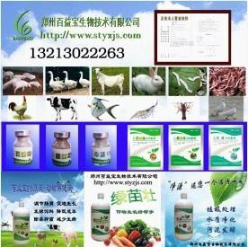绿苗壮种植菌 2