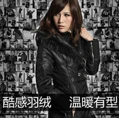 冬季新款立領貉子毛條帶帽黑色長款羽絨服