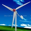 1KW wind power generator  3