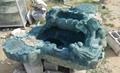 泰山玉苶海连年有余 3