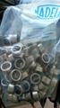 NADELLA Bearing NADELLA Roller DL1812