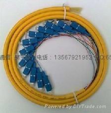 12芯fc束狀尾纖