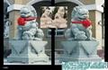 石狮子北京狮 4