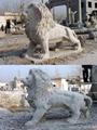 石狮子北京狮 3