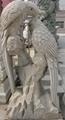 石雕鸚鵡鳳凰鹿鶴