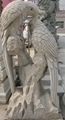 石雕鹦鹉凤凰鹿鹤