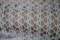 Nylon polyamide spandex knitted jacquard swimwear fashion modern fabric  5