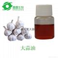 高纯度大蒜油50%