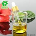 天然高纯度五味子油