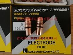 2.9R小池酸素等離子電極40016358