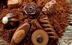 Pure Natural/Alkalized Cocoa Powder (food grade)