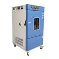 Constant temperature and humidity incubator