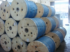 Galvanized Steel Stranded Wire