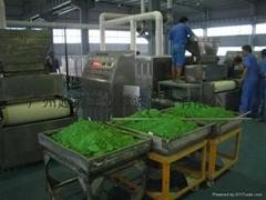 供應化工物料微波烘乾設備
