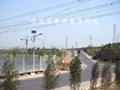 河北太陽能路燈