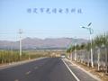 河北太陽能路燈工程 2