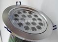LED18X1W天花燈 5