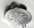LED天花燈12W 3