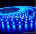 LED5050燈條 2