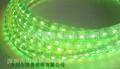 高壓燈條每米48燈 5