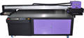 UV Fatbed Printer with Ricoh GH2220 heads 16