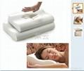 供應慢回彈海綿養生保健枕頭 2