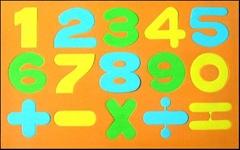 EVA magnetic numbers