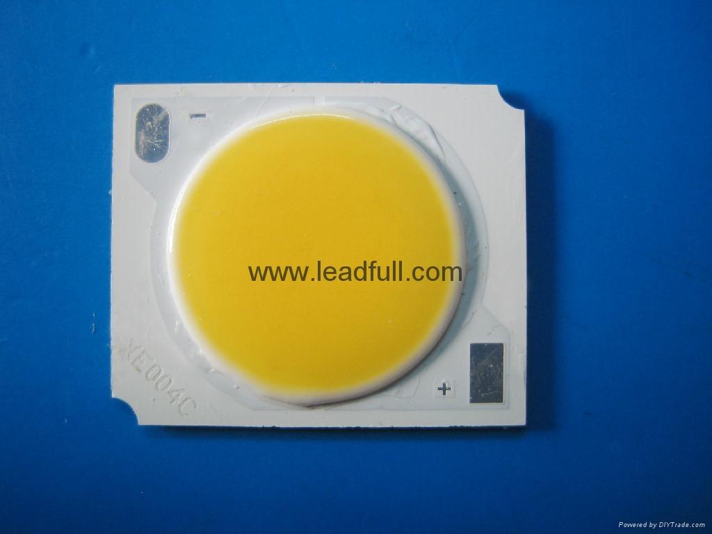 COB LED track lamp 2