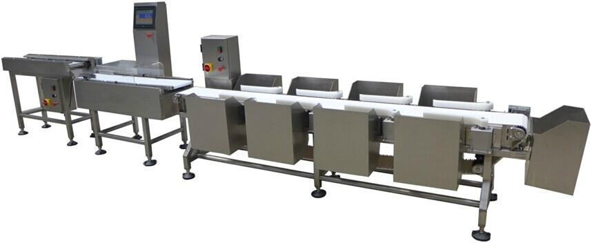 Multi-level Sorting Check Weigher