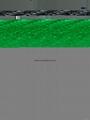 Hi-speed online conveyor Check Weigher
