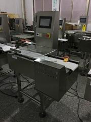 online conveyor weight checker