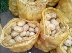 2018 New Crop  Fresh Potato