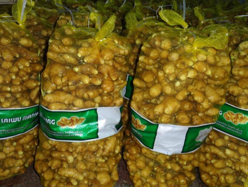 Fresh ginger(2017 new crop) 1