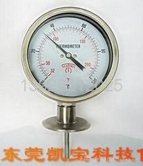 卡箍式双金属温度计