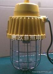 DGS70/127B(A)矿用防爆灯