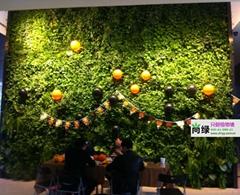 北京售楼处植物墙