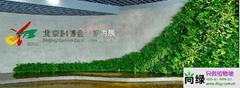 北京园博会植物墙