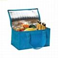 Custom Outdoor insulated cooler bag