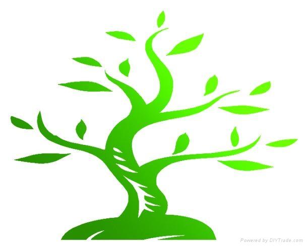 天然植物芦荟保湿处理剂 2