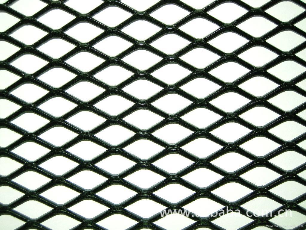重型钢板网 1
