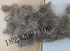 curled horse hair for mattress filling