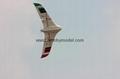 FX-79 Buffalo  2m EPO FPV  Wing   Electronic RC airplane model 10