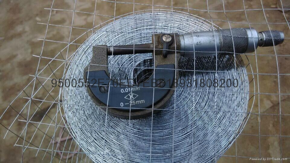 鋼絲網片鍍鋅5mm 4