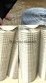 對焊電焊方孔國標1.27鍍鋅建築挂網鋼絲片 4