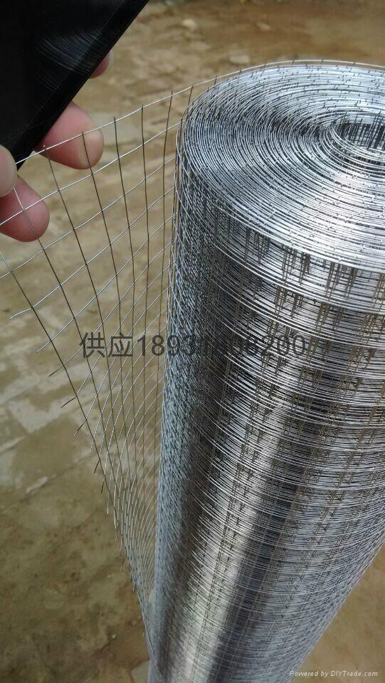 對焊電焊方孔國標1.27鍍鋅建築挂網鋼絲片 5