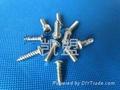 不锈钢钝化液螺丝专用