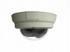 Vandalproof  IP Camera(IP2066)