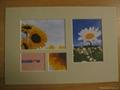 "Paper frame, home decoration 8*10"" photo frame 3"