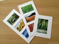 "Paper frame, home decoration 8*10"" photo frame 1"